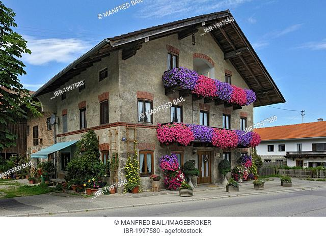 Old farmhouse with geraniums (Pelargonium) on the balconies, Schlacht near Munich, Bavaria, Germany, Europe