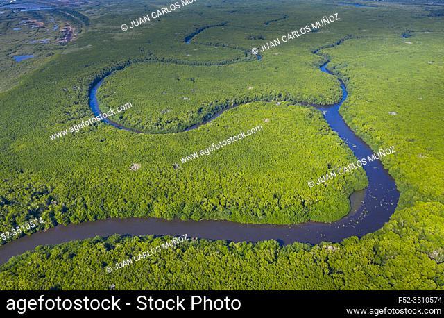 Mangrove, La Tovara National Park, Ramsar Site, Wetlands of International Importance, San Blas Town, Matanchen Bay, Pacific Ocean, Riviera Nayarit
