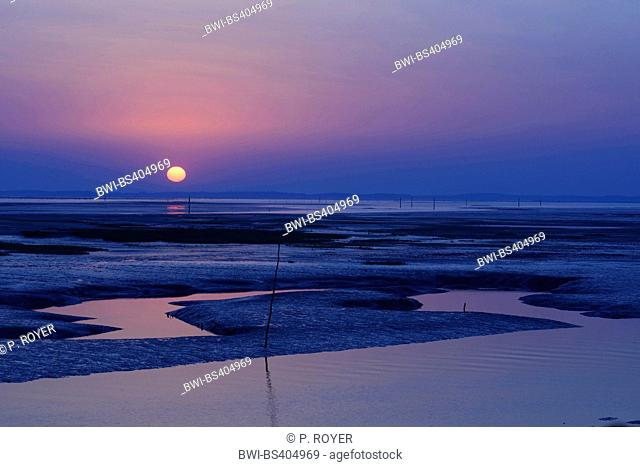 low water in the bay of Arcachon at sunset, France, Bordeaux, Arcachon