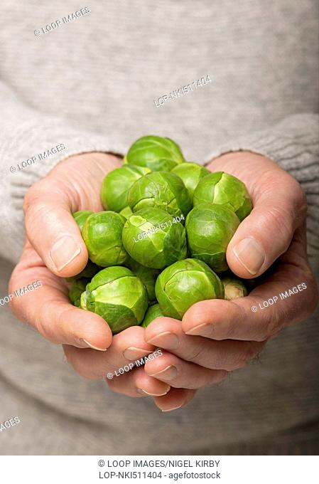 Hands holding raw Brussel sprouts