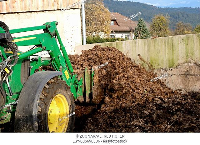 Manure is loaded with tractor
