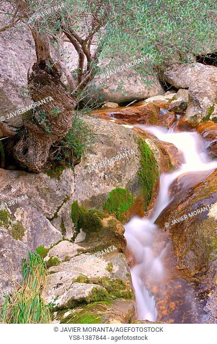Spain, Balearic Islands, Mallorca, Corner ravine Biniaraix Mallorcan Village located in the Sierra de Tramuntana
