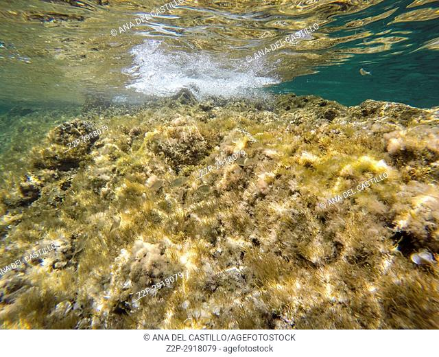 Turquoise water in Minorca, Balearics Islands, Spain. Underwater image Sa Mesquida coast