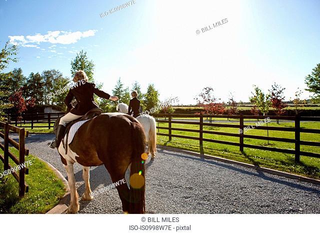 Boys riding horses in sunlight