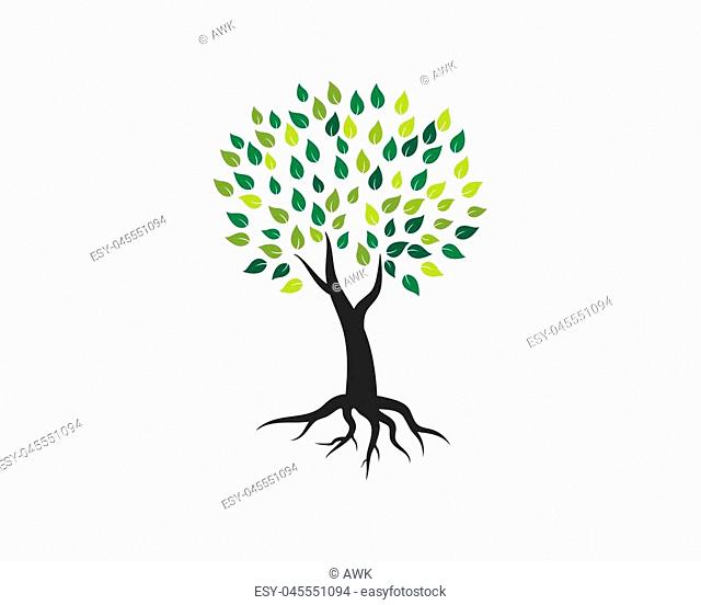 Tree icon logo template vector illustration