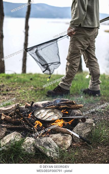 Bulgaria, man frying rudd at camp fire at shore of Dospat Reservoir
