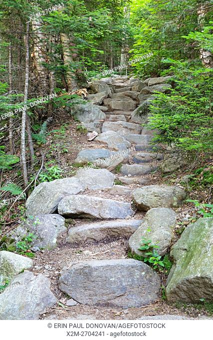Stone staircase along Valley Way in the New Hampshire White Mountains during the summer months