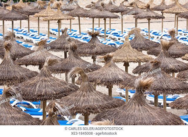Umbrellas and deckchairs, Majorca, Balearic Islands, Spain