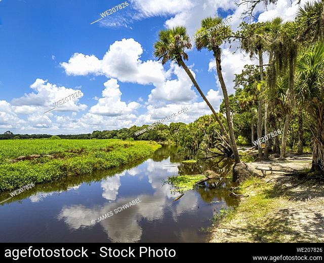 Myakka River on a summer day with blue sky and white clouds in Myakka River State Park in Sarasota Florida USA