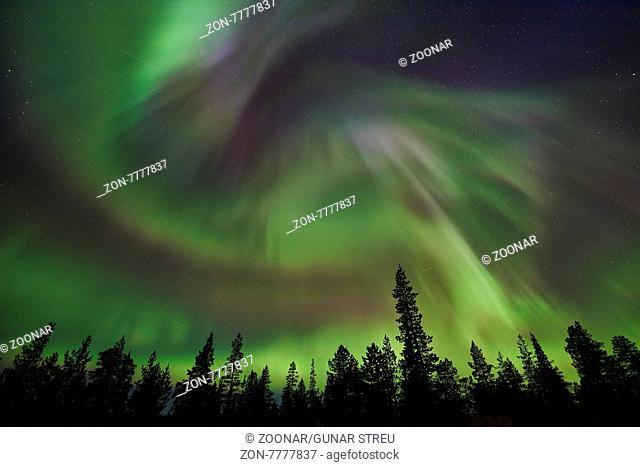 Nordlicht (Aurora borealis), Norrbotten, Lappland, Schweden, September 2015