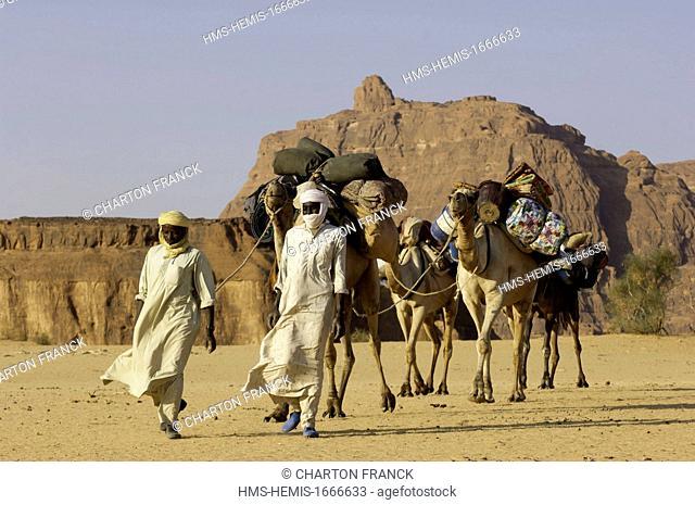 Chad, Southern Sahara desert, Ennedi massif, Tougouloula oued