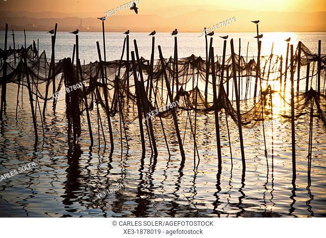 Fishing nets and seagulls, evening, Albufera de València, Valencian Community, Spain