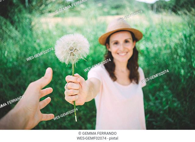 Man's hand receiving blowball from woman, close-up