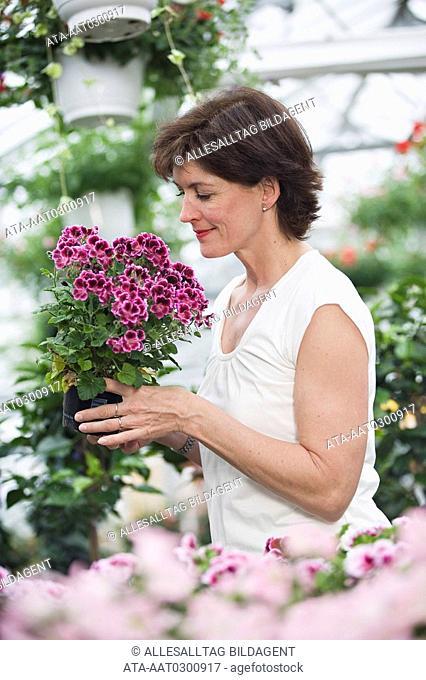 Woman looking at geranium