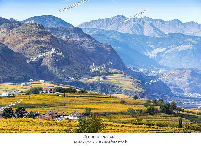 Italy, South Tyrol, Alto Adige, Überetsch, South Tyrol's South, Wine Route, Girlan, Ignaz Niedrist Winery, Vineyard, View of Hocheppan