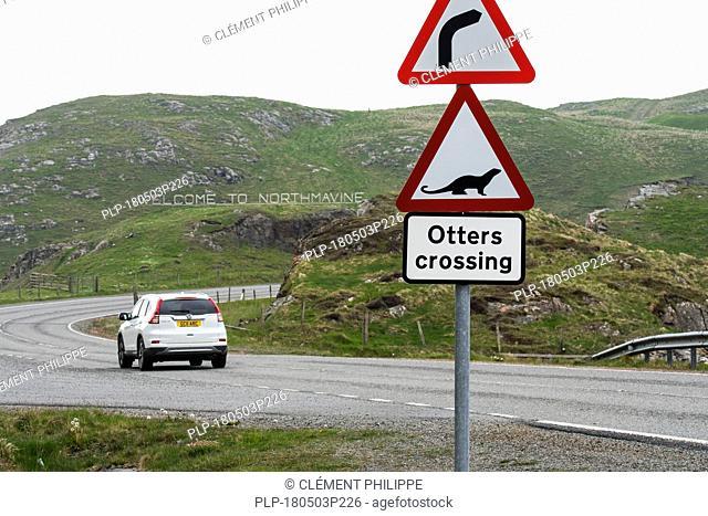 Eurasian otter / European otter (Lutra lutra) road warning sign for otters crossing street at Mavis Grind in Northmavine, Shetland Isles, Scotland, UK