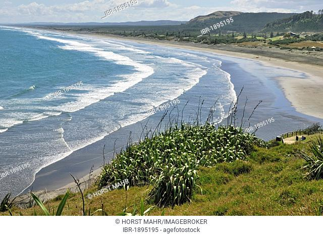Muriwai Beach, Muriwai Regional Park, west of Auckland, North Island, New Zealand