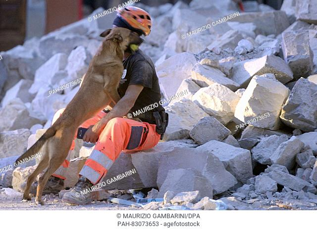 A dog handler and his search dog rest after a mission in Amatrice, Italy, 24 August 2016. Several people have died as the result of a powerful earthquake in...