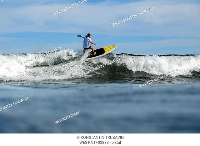 SUP surfer, Bali, Indonesia