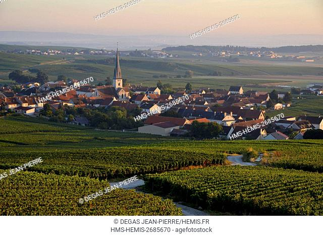 France, Marne, Chamery, mountain of Reims, vineyards of Champagne wih a village in the background at dawn
