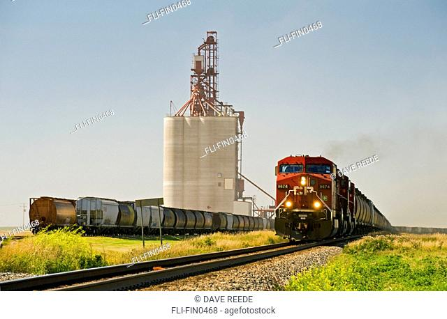 Train carrying grain rail hopper cars passes an inland grain terminal, Gull Lake, Saskatchewan