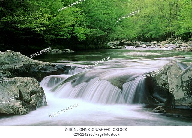Waterfall in Middle Prong of Little River , Great Smoky Mountains National Park, Tennessee, USA