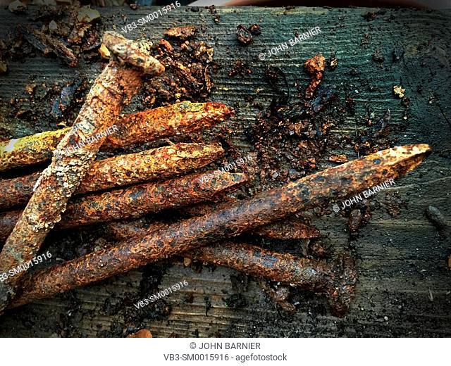 Rusty, friable small spikes with pieces of rusted steel flaking off onto a weathered wood surface