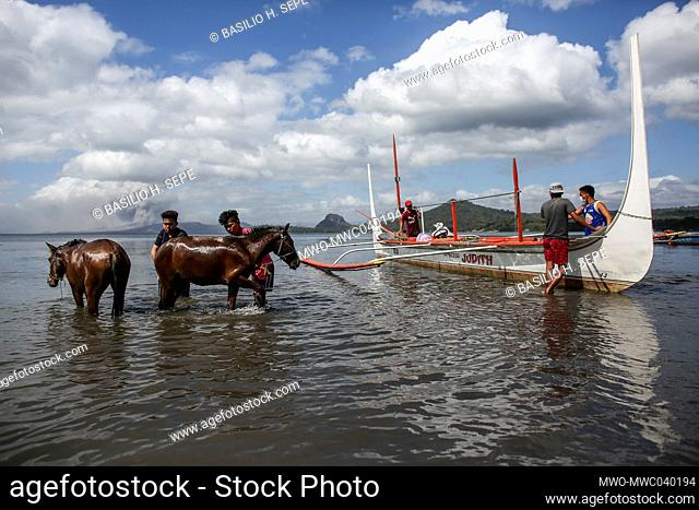 People clean horses rescued from across the lake as Taal volcano continues to spew ash and smoke In Balete, Batangas province south of Manila