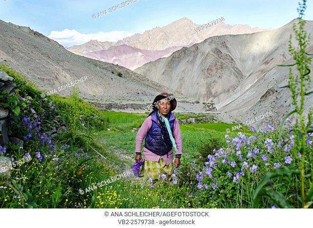 Landlady at Yurutse homestay. Trekking in Markha valley (Laddakh, India)