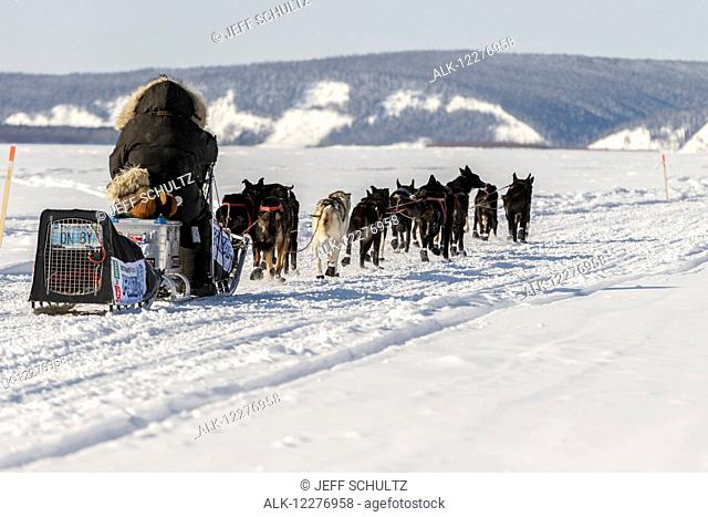 Lance Mackey's license plate ON BY shows on his dog carrier as he runs down the Yukon River after leaving the Koyukuk checkpoint during Iditarod 2015