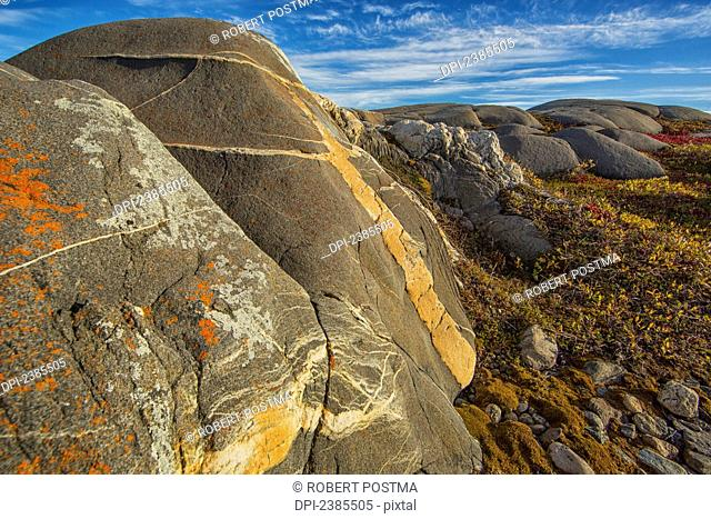 The lichen covered rocks surroundng the landscape of the shoreline, Hudson Bay; Manitoba, Canada