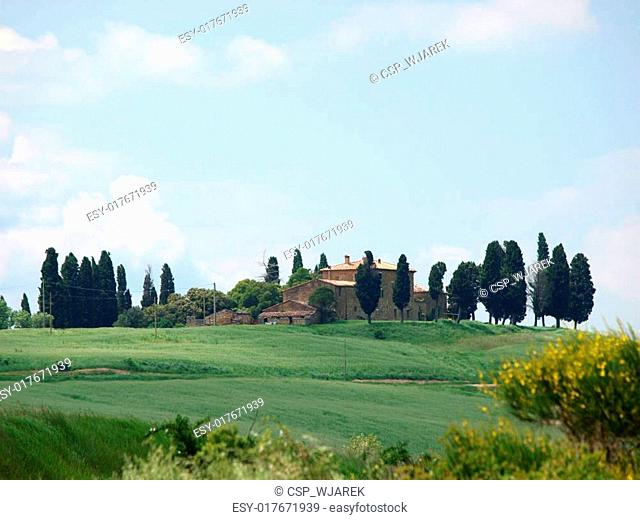 The landscape of the Val d?Orcia. Tuscany. Italy