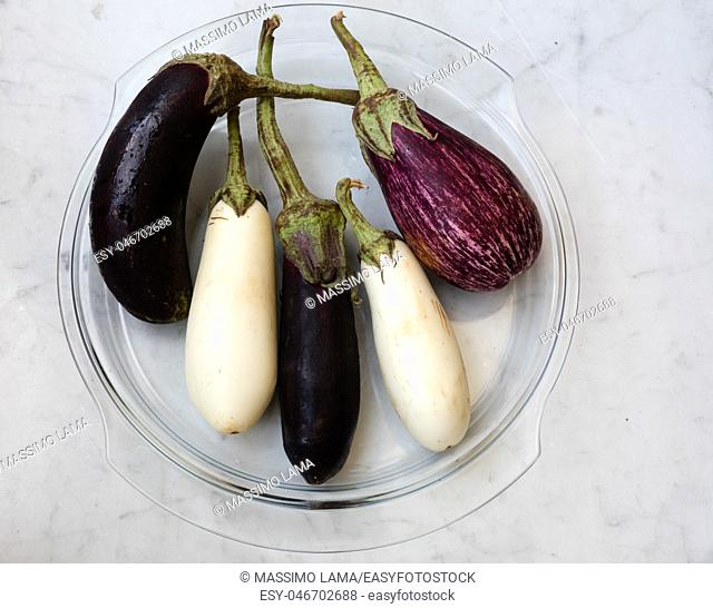 Close up of mixed variety of eggplant