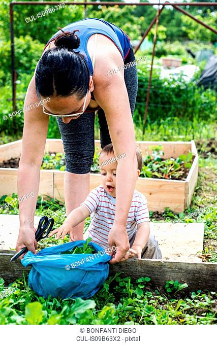 Mother and baby at allotment
