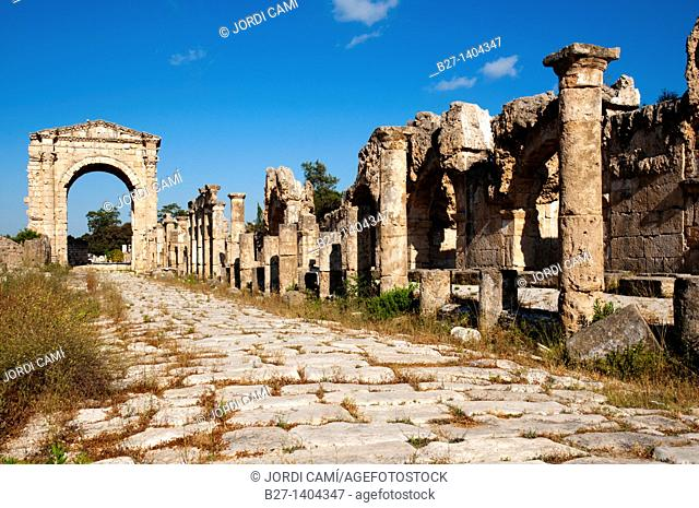 Colonnaded street and the Roman Triumphal Arch, Al Bass site , Tyre Sour, UNESCO World Heritage Site  Lebanon