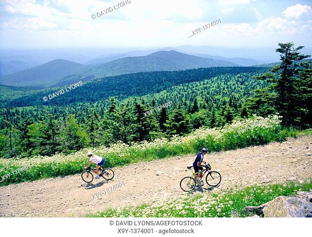 Mountain biking on trails on Killington Mountain, Vermont, New England, USA  High summer