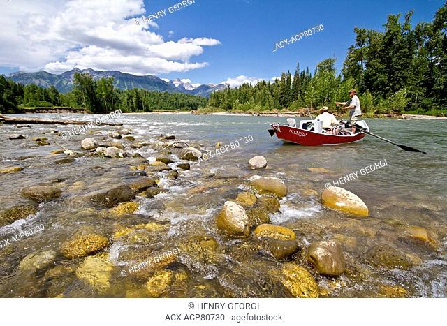 Middle-aged man fly-fishing on Elk River with guide rowing fishing boat, near Fernie, East Kootenays, BC, Canada