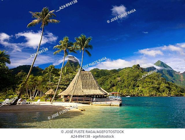 Cook's Bay, Moorea, Society Islands, French Polynesia (May, 2009)