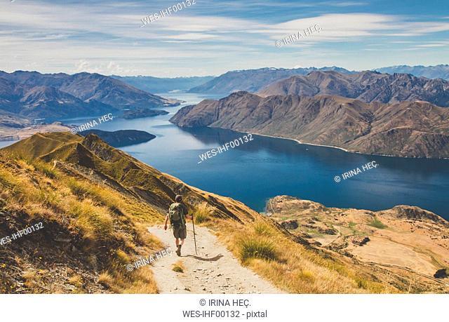 Man hiking at Roys Peak, Lake Wanaka, New Zealand