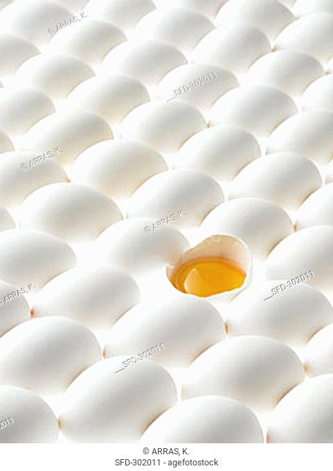 White eggs, lying on their sides, one opened