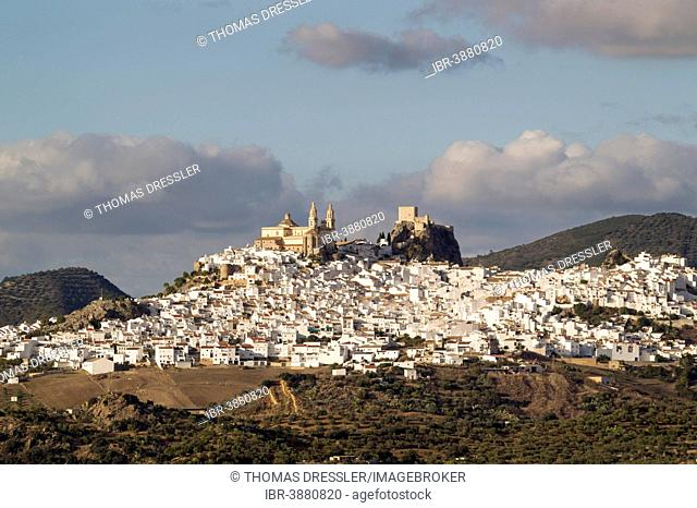The hilltop White Town of Olvera with La Encarnación church and the Moorish castle, Cádiz province, Andalusia, Spain