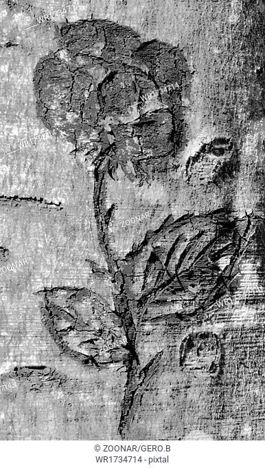 Flower on tree bark carved black