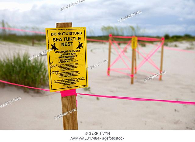 Protected sea turtle nest in Bon Secour NWR. Sea turtle populations in the Gulf of Mexico have been significantly affected by the BP oil spill