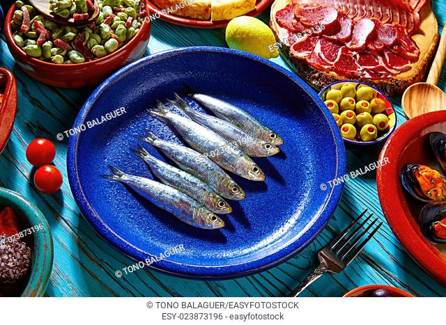 Tapas from spain sardines and mix of most popular recipes of Mediterranean
