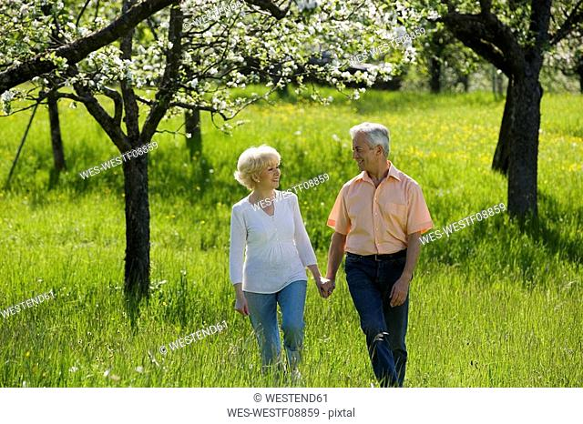 Germany, Baden Württemberg, Tübingen, Senior couple walking through field