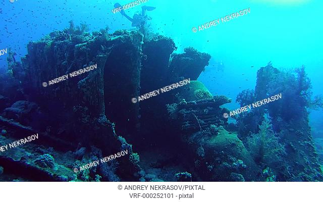 Cargo plumbing from the sunken ship, Ras Muhammad National Park, Red Sea, Sharm el Sheikh, Egypt, Sinai