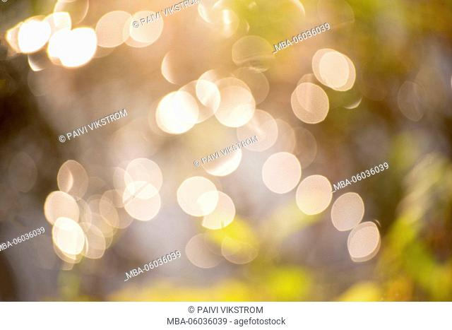 Summer abstract with bokeh lights