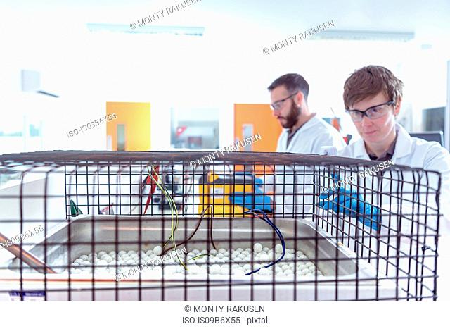 Scientists cable insulation resistance testing in electrical cable laboratory