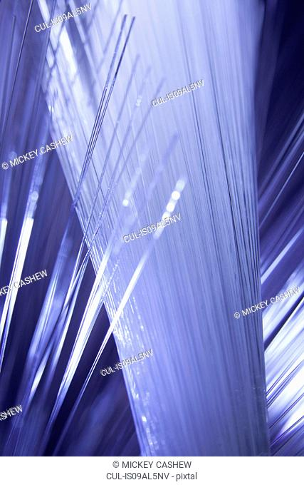 Abstract close up of illuminated strands of fiber optic light