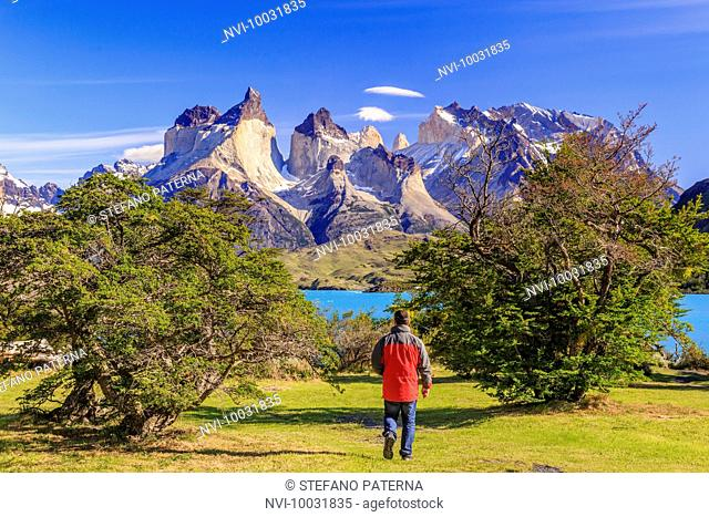 Hiker in the National Park Torres del Paine, Patagonia, Chile